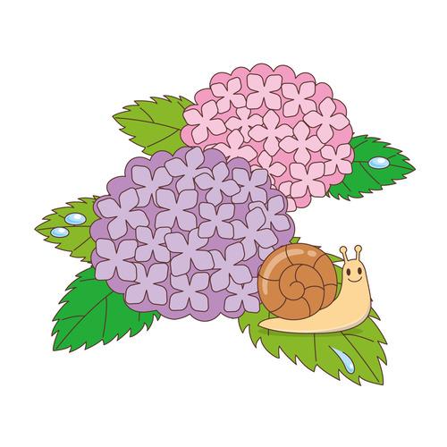 紫陽花とかたつむり(季節・行事/その他一般・装飾)のイラスト
