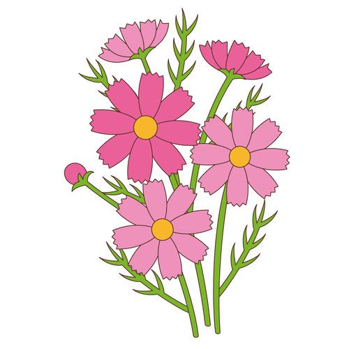 コスモス(お花/その他一般・装飾)のイラスト